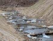 New Report Identifies Restoration Opportunities in the Rose Creek Watershed