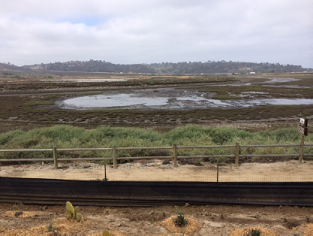 San Dieguito River at low tide