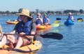 "SDAPA Event Recap: Plan to Kayak ""Eco-Tour"" with Ocean Connectors"