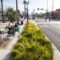 Complete Streets: Transportation Infrastructure that Everyone Can Enjoy